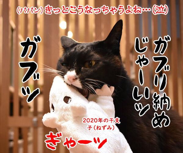 来年の干支の丑さんがご挨拶なのッ 猫の写真で4コマ漫画 6コマ目ッ