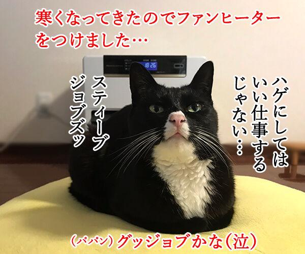 ファンヒーターのそれぞれの定位置 猫の写真で4コマ漫画 1コマ目ッ