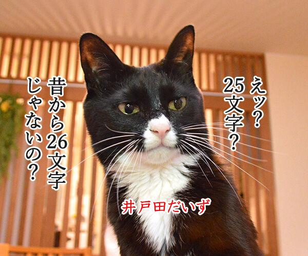あま~いッ 猫の写真で4コマ漫画 2コマ目ッ