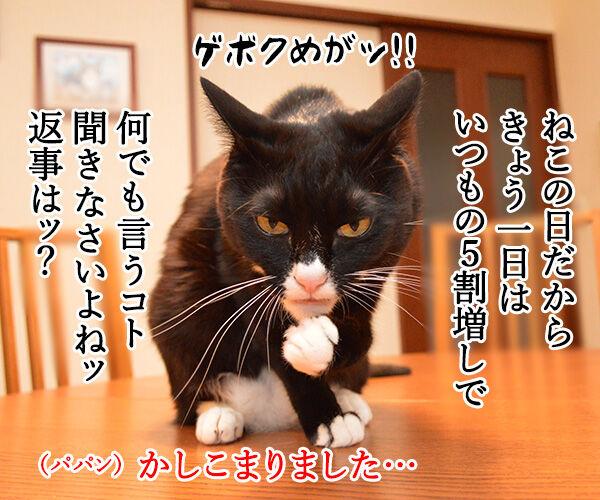 にゃんにゃんにゃんは猫の日なの 猫の写真で4コマ漫画 2コマ目ッ