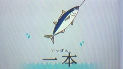 マグロ (1)