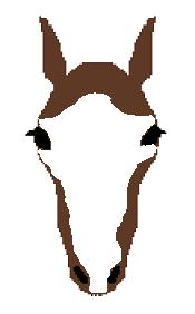 頭部の白斑(白面)