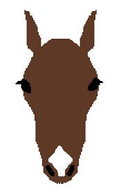 頭部の白斑(鼻白)