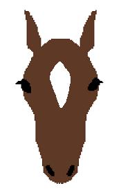 頭部の白斑(流星)