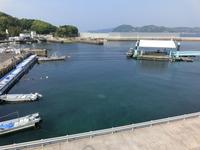 鷹島ダム港