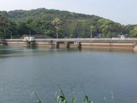 鷹島ダム湖