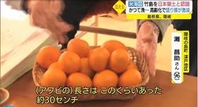 竹島の日 資料12
