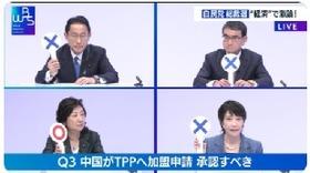 野田聖子 中国 TPP