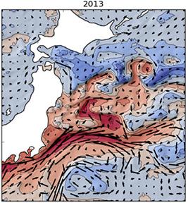 2013年の日本近海の海面水温