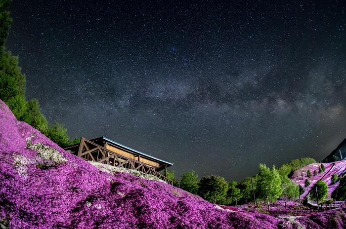 芝桜と天の川 (1 - 1)