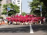真花2010.6.12.1