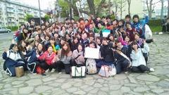 真花2012.5.19