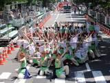 真花2010.6.13.1