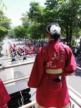 真花2010.6.13.3