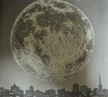 月光条例 第232話 08