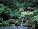 japanese-garden-oscon2005.jpg