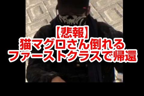 【悲報】徳島町会議にて猫マグロさん倒れる→ファーストクラスで帰還wwww