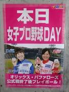 本日女子プロ野球DAY
