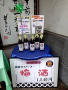 倉敷店限定梅酒