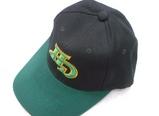 現代ユニコーンズ帽