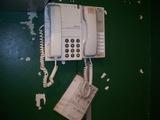 ブルペンの電話