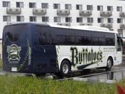 バファローズバス
