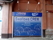 Swallows CREW