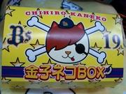 金子ネコBOX1
