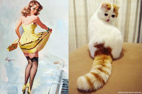 美女と猫2