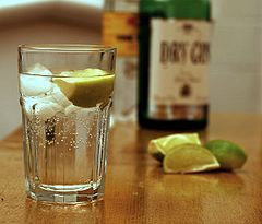 240px-Gin_and_Tonic_with_ingredients