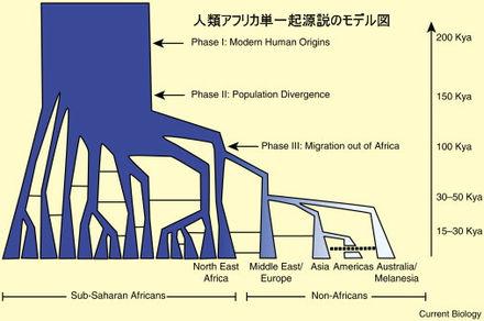 人類アフリカ単一起源説のモデル図