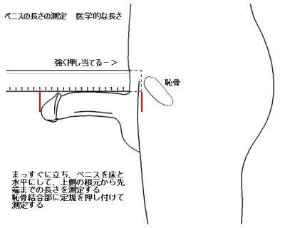 80d1f4c4.jpg