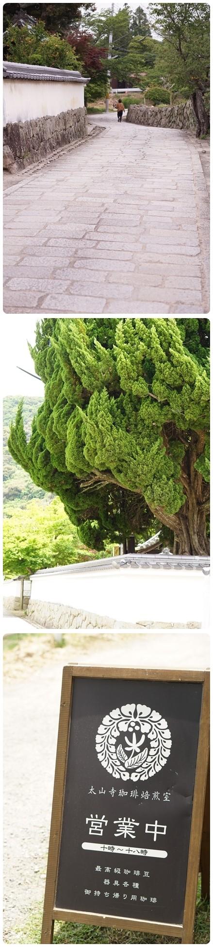 ■DSC07900-vert