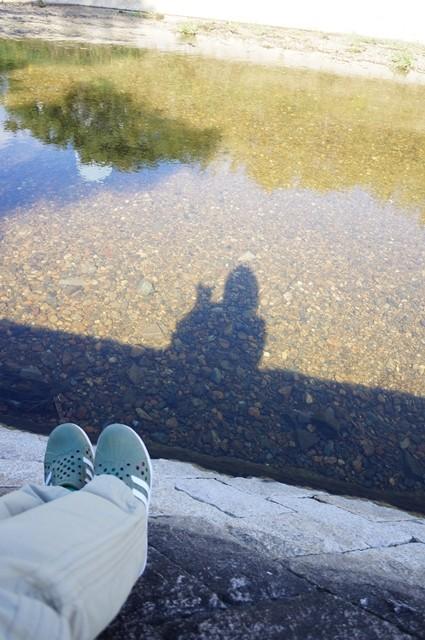 ■121019散歩 (14)
