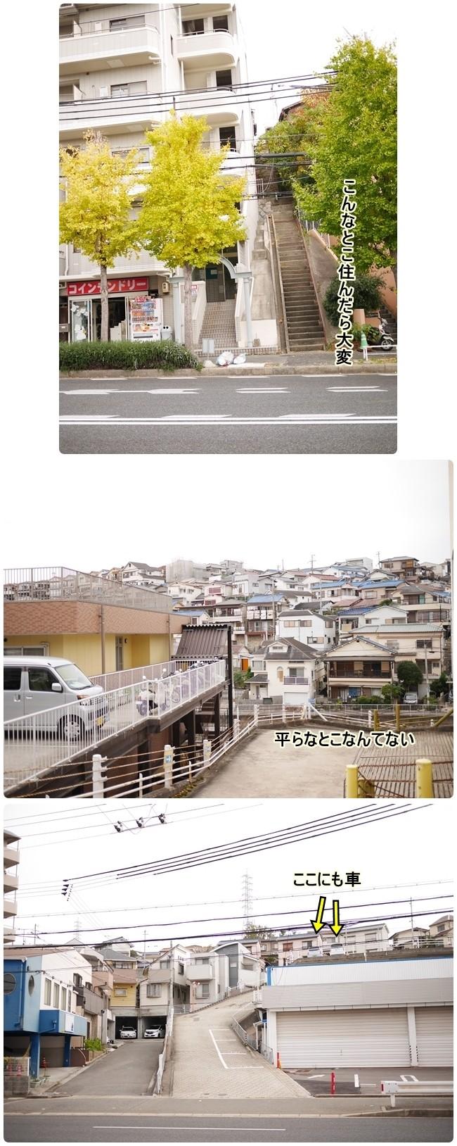 ■P1210019-vert