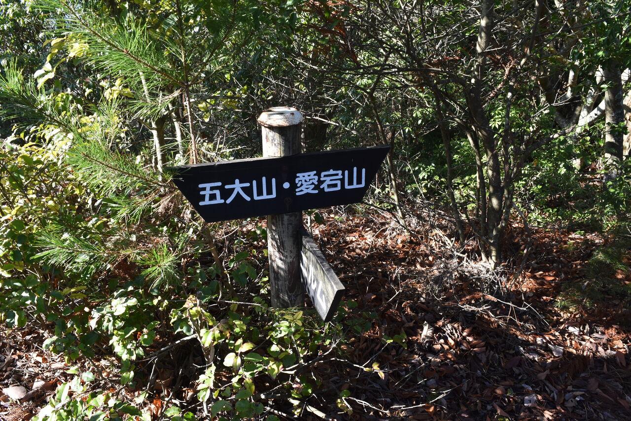 愛宕 山 丹波