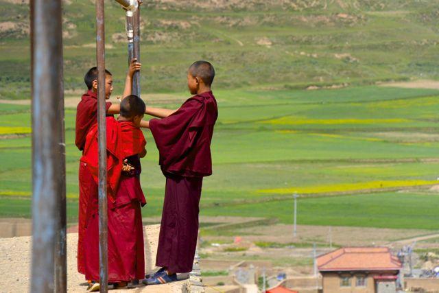 チベット仏教僧に色々聞いてみた...