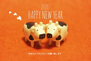 cow_photo_hagaki_08_f1