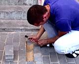 地面の下に何かいる! 足元で謎の鳴き声、そして掘り返してみたら・・・