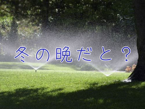 「真冬の晩にスプリンクラーを切り忘れると…芝生がカプセル化されることを学んだ」驚きの写真