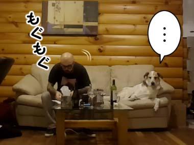 イヌと男がソファに並んで座っていた。男が食事を始める → すると…