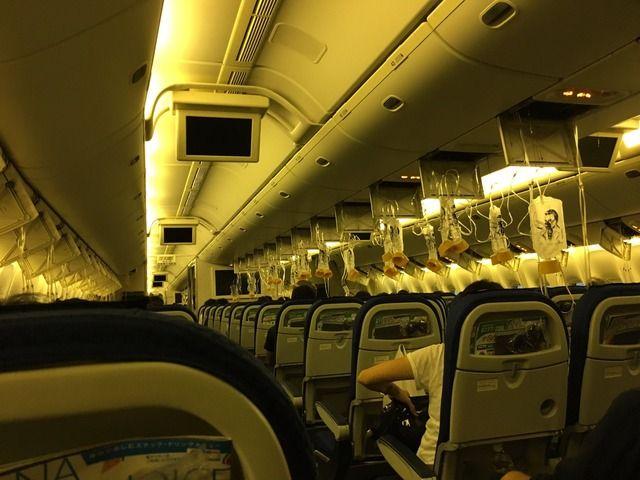 【画像あり】ANAの飛行機が羽田空港に緊急着陸