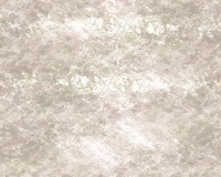 texture13h