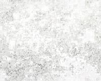 texture09e