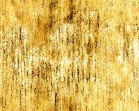 texture12d1