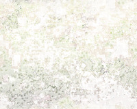 texture09d