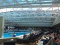 swiming pool 1