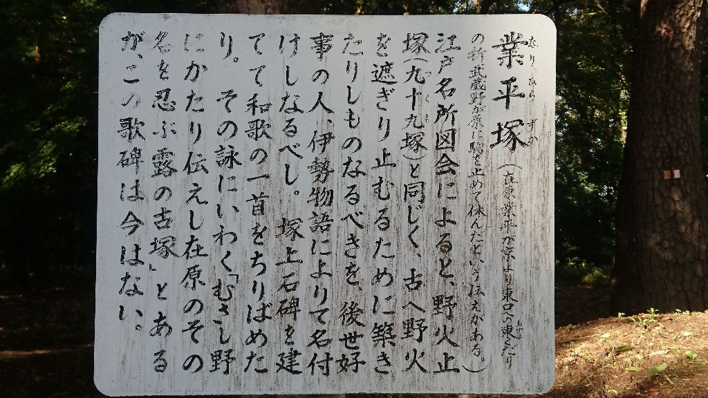 イメージ 45