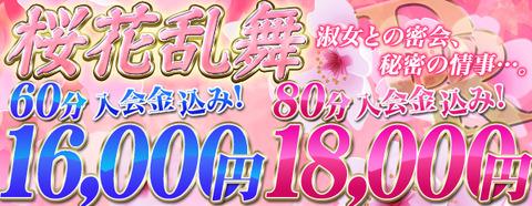 DG桜花乱舞598x232