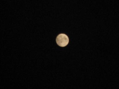 20091003「中秋の名月」